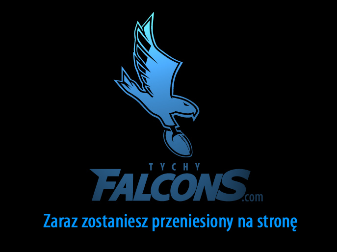 tychy falcons